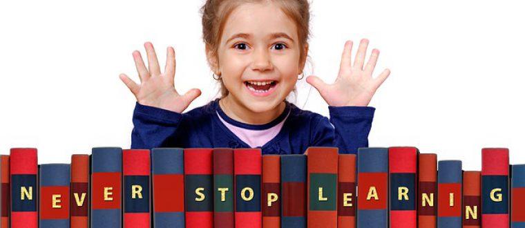 """סאמר סקול בחו""""ל: אטרקציה חינוכית לילדים"""
